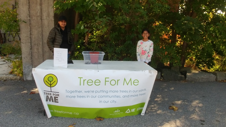 Tree for Me-Oct 14 2018