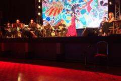 Mediterraneo Concert8 - July 25 2015JPG